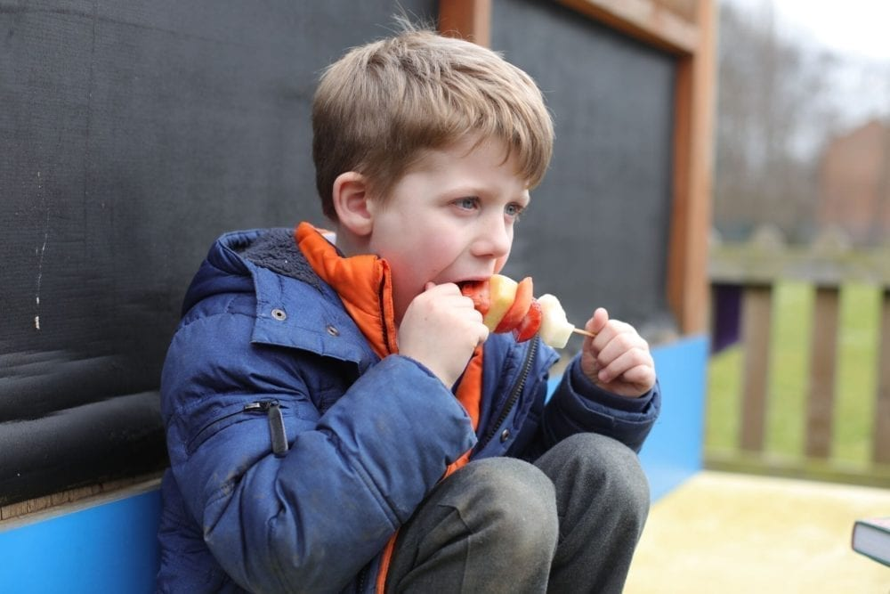 Know Your Roots – helping kids connect with their food