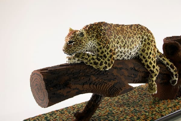 Lego model of Lenora the African leopard