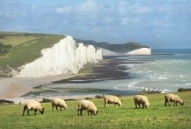 National Trust site access