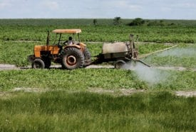 EU 'pesticide scandal'